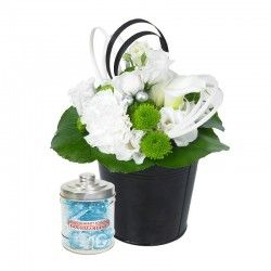 PACK NOEL BLACK & WITHE ICE HIBISCUS FLEURS