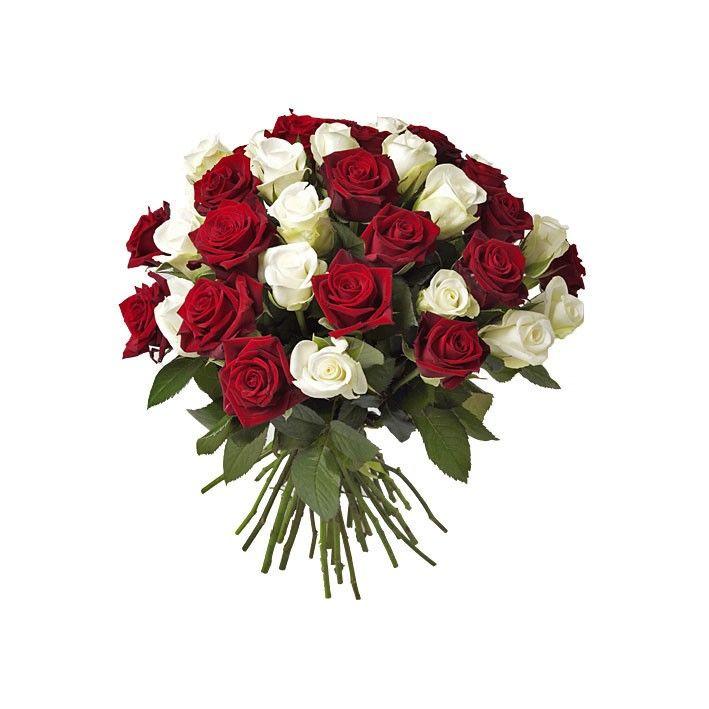 Bouquet Roses Rouge Et Blanche St Valentin