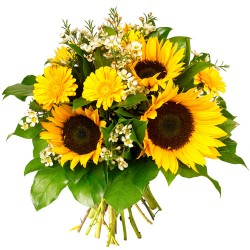 BOUQUET ROND TOURNESOL DUNE