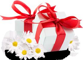 img-cadeau.png